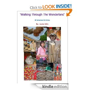 ဒစ္ဂ်စ္တယ္စာအုပ္ -'Walking Through The Wonderland' and Selected Articles'