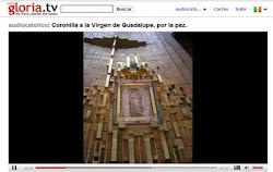 Coronilla a la Virgen de Guadalupe por la Paz.