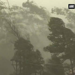 Incessant rainfall, cyclonic wind damaged two vehicles in Darjeeling town