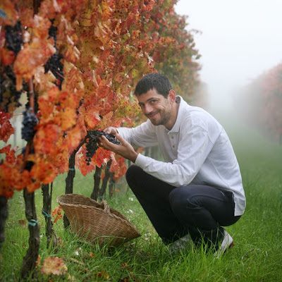 Interview With :    Giampaolo Tabarrini, Proprietor and Winemaker for Tabarrini