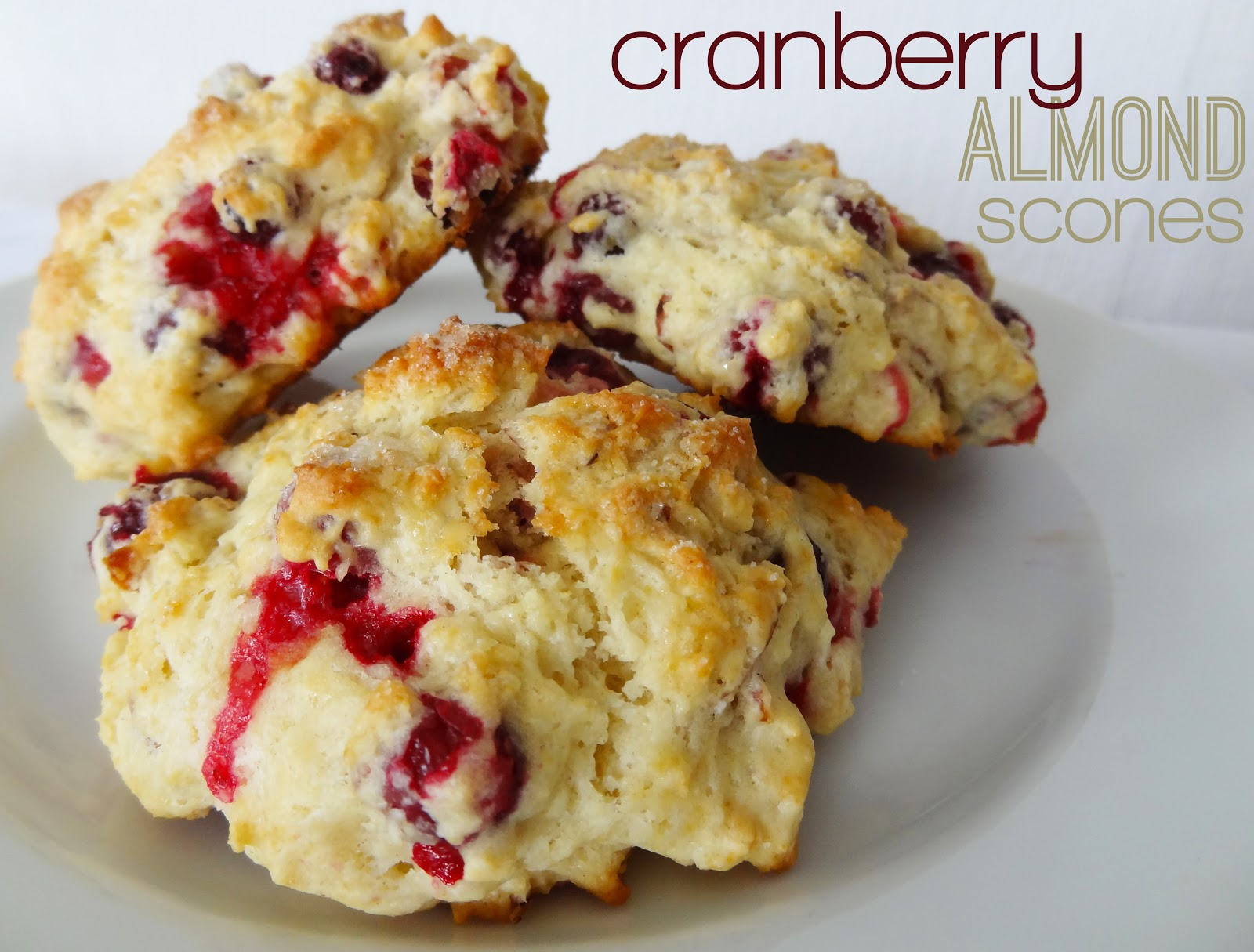 cranberry scones baked in teacups cranberry almond biscotti cranberry ...