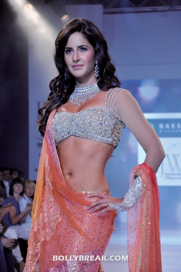 Katrina Kaif Hot Long Navel Photo in Saree - Katrina Kaif Long Navel Photo in Saree