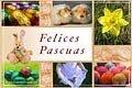Pascua 2012 tarjetas de pascua Correo Mágico