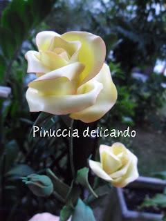 Grazie Pinuccia!!