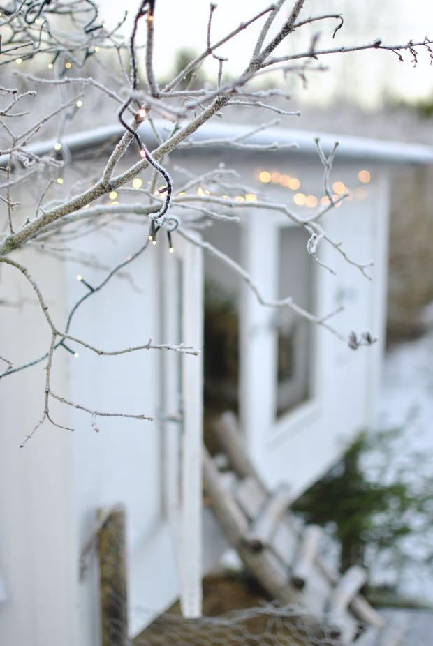 kaninbur ljusslinga jul
