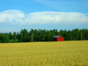 ...and this is what I love in Finland...the rustic BARNS