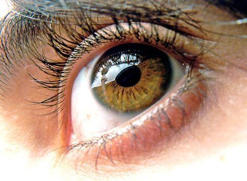 fundacion oftalmologica andes: