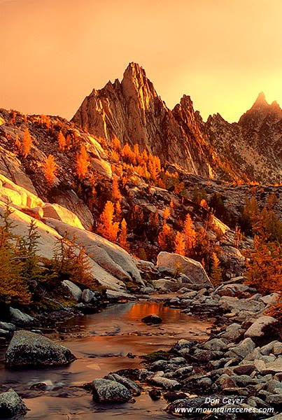 Prusik Peak above fall larches at sunrise as a storm clears, Enchantment Lakes, Alpine Lakes Wilderness, Washington, USA.