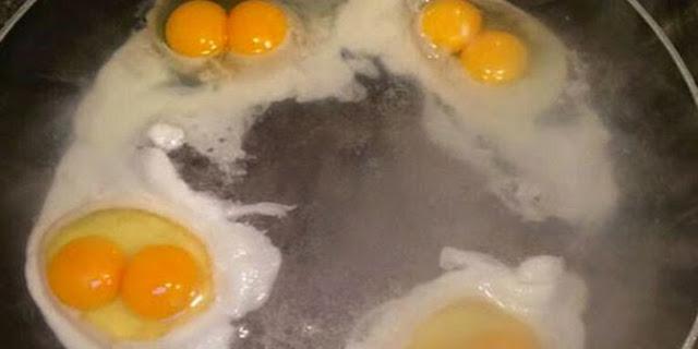 Empat Telur Aneh, Berkuning Ganda