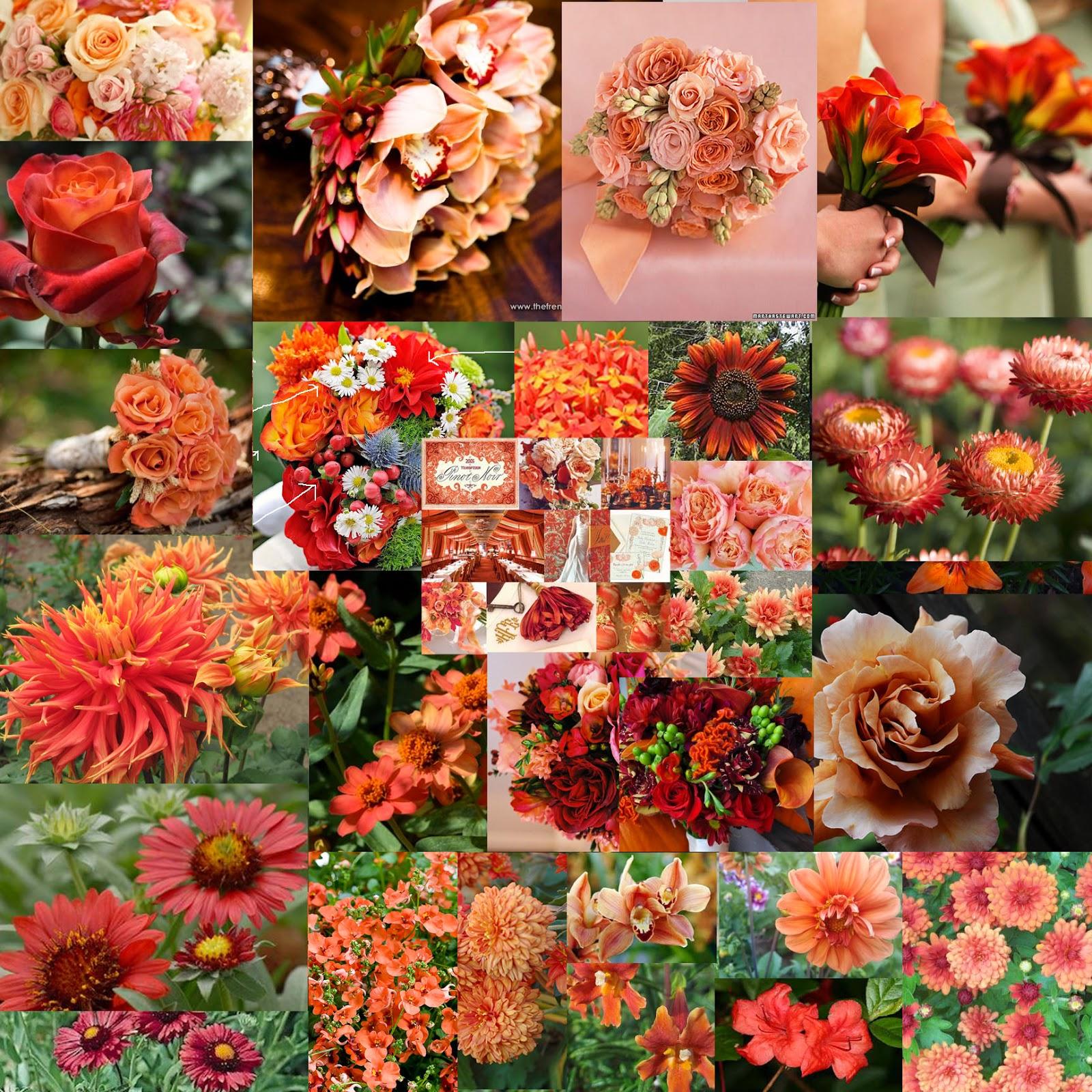 The Autumn Wedding: Wedding Colours - Peach, Coral, Burgundy, Brown ...