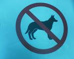 not animal behavior alowed