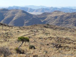 Reisen Afrika Namibia Spreethoogte Pass