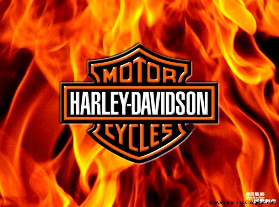 Harley Davidson Wallpaper 3 Wallpapers  Hd Car Wallpapers