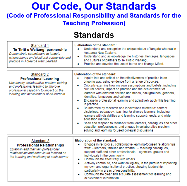 Collaborative Teaching New Zealand ~ Marnel van der spuy our code standards