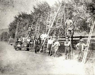 Hired_apple_pickers_Old_Economy_Village_collection