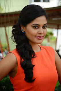Actress Bindu Madhavi Picture Gallery at Tamizhukku En Ondrai Azhuthavum Press Meet 5