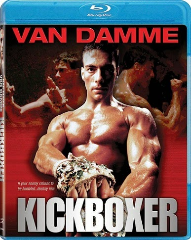 Kickboxer 1989 Dual Audio [Hindi-English] 300MB BRRip 480p