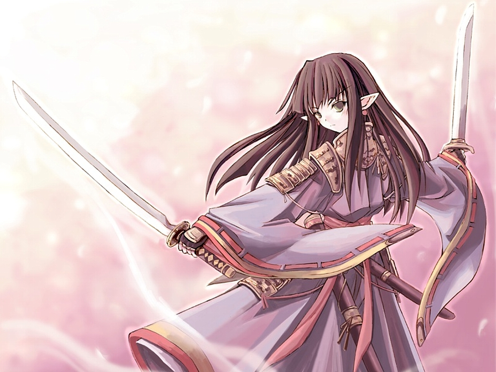 Has the ability to channel different magic attacks into her swords
