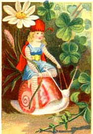 Snail Fairy Rider