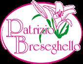 Collaborazione Patrizio Breseghello