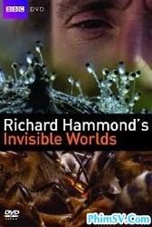 Thế Giới Vô Hình của Richard Hammond - Richard Hammond's Invisible Worlds