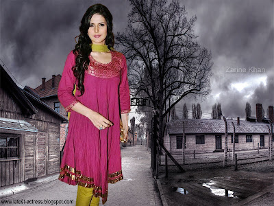 Zarine Khan Latest Wallpaper