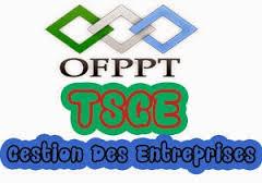 Modules Gestion des Entreprises TSGE - OFPPT