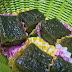 Green Tea cake Kukus