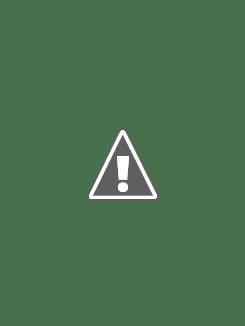 20100320_01.jpg