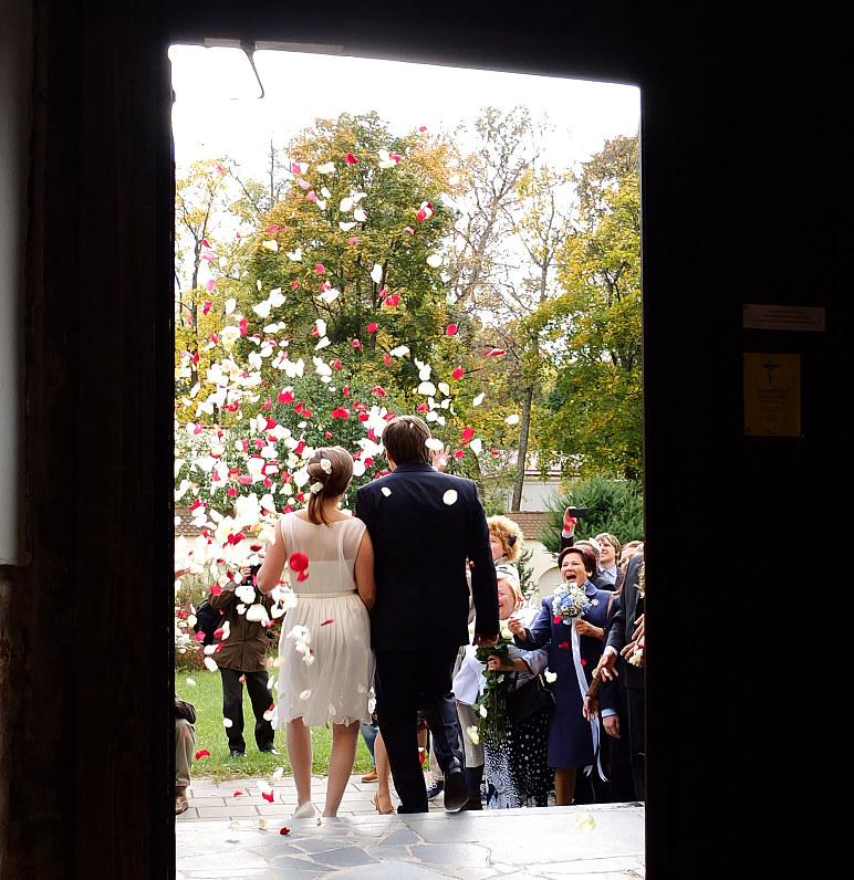 vestuvių žiedlapiai