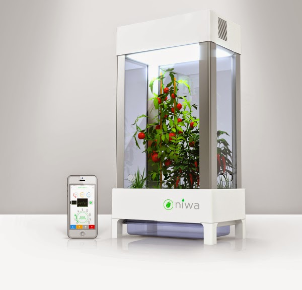 Niwa smartphone controlled indoor plant growing system for Kitchen set environment variables