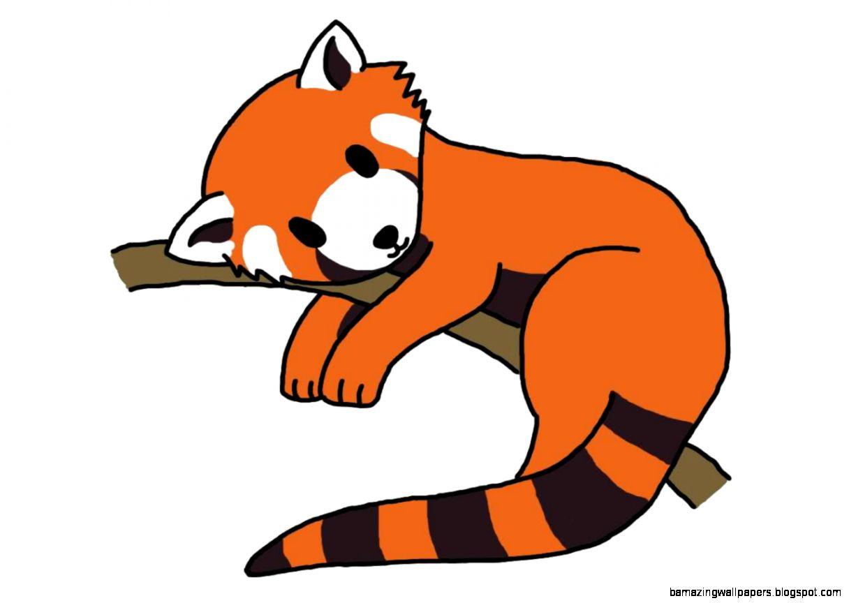 Cute Red Panda Drawing