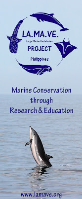 Large Marine Vertebrates Project Philippines (LAMAVE) - Bohol Sea