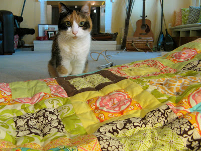 cat and sandi henderson Meadowsweet quilt