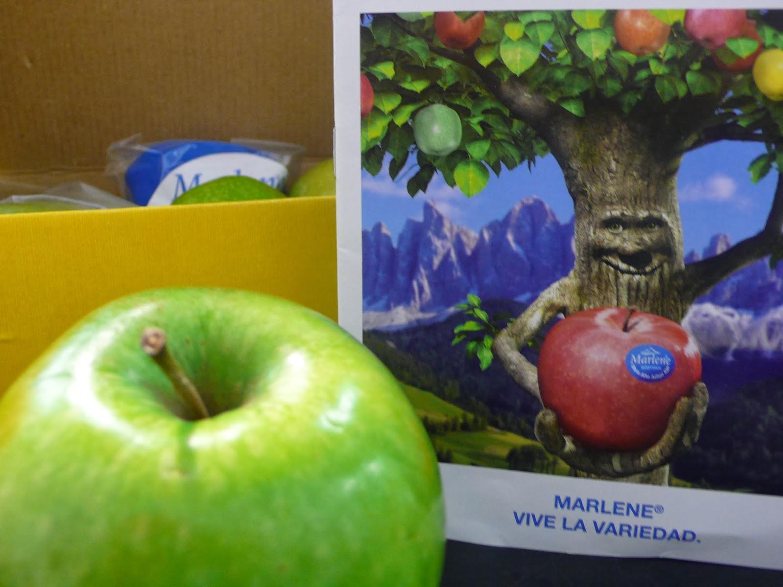 http://www.marlene.it/es/nuestras-manzanas/variedades-de-marlene/royal-gala.html