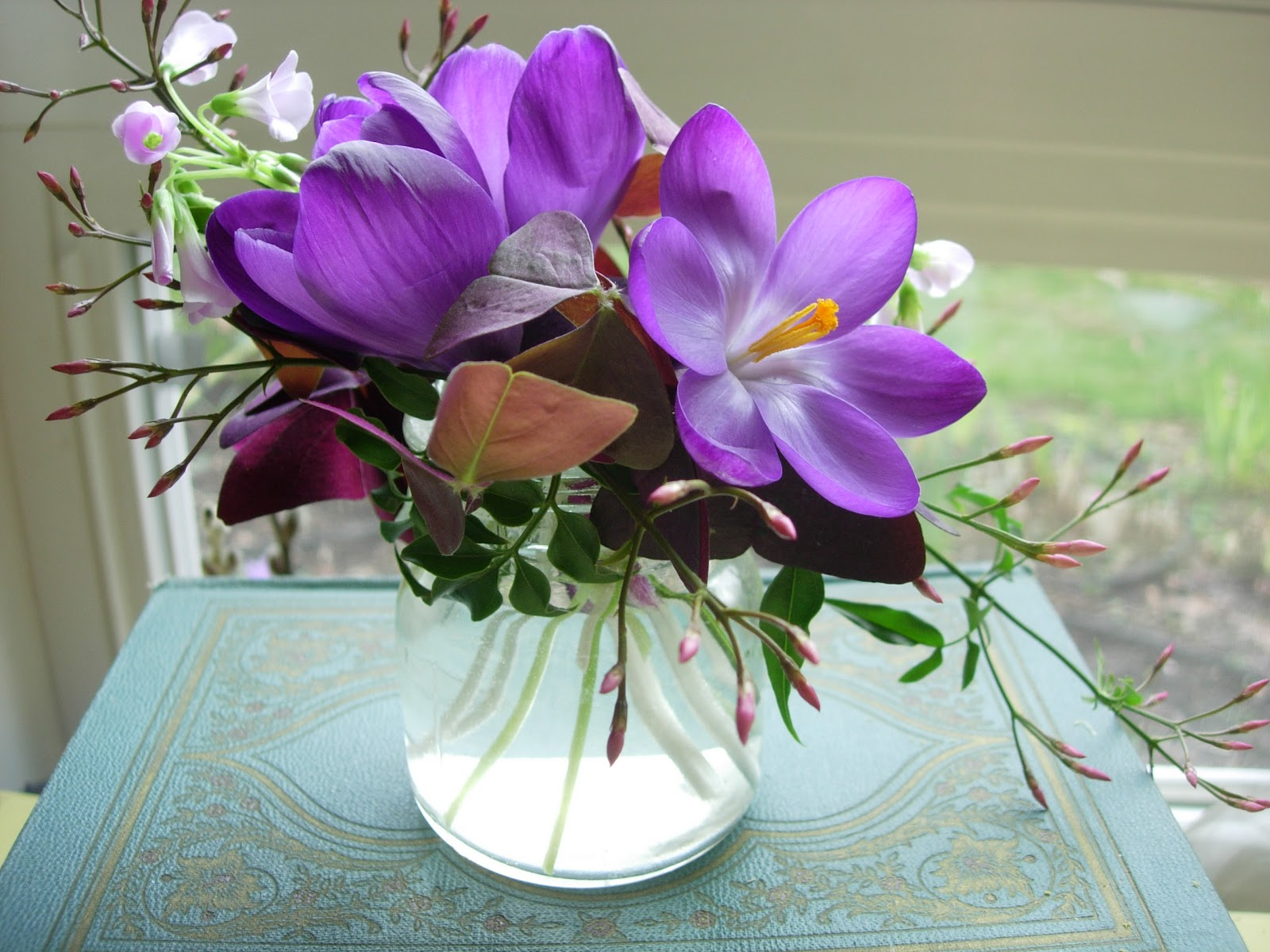 The Botanique Blog Tiny Purple Spring
