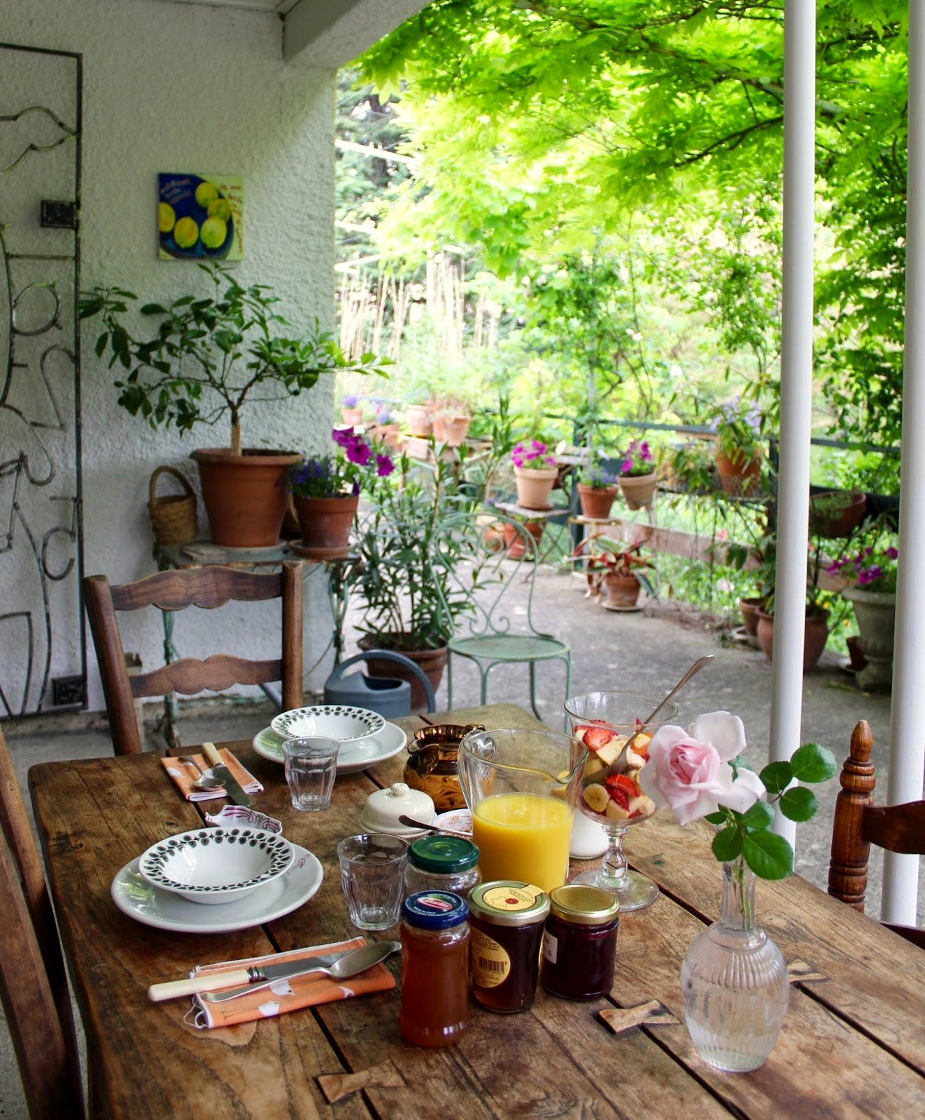 Limoux bed breakfast in the hothouse april 2014 for Breakfast terrace