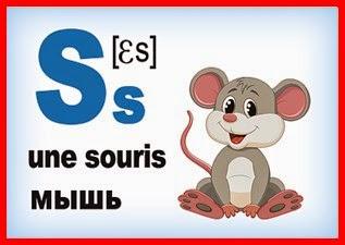 Карточка - французская буква S