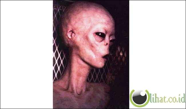 Alien Mati Ditangkap