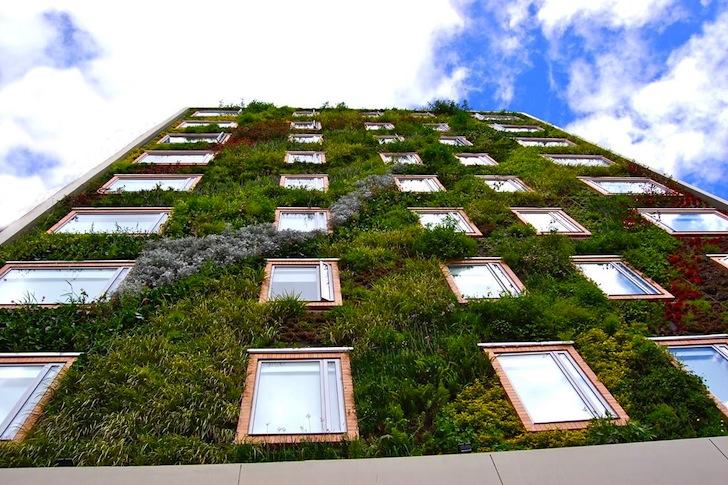 jardim vertical o que e