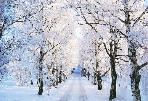 i shall never forget the trip i took to tulsa oklahoma - I Ll Have A Blue Christmas Without You