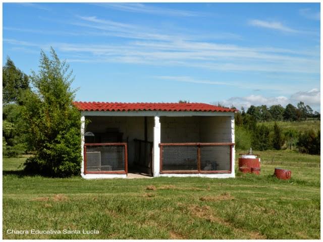 Conejera - Chacra Educativa Santa Lucía
