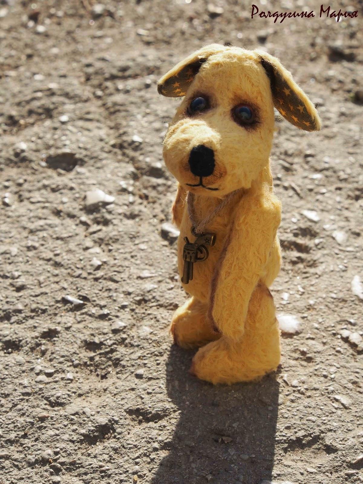 собака пес игрушка тедди