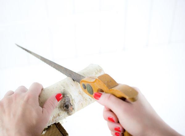 DIY Regal aus Birkenholz sägen