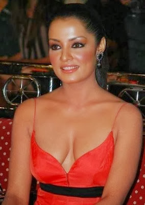 Celina Jaitley Hot Cleavage Show Pictures Gallery