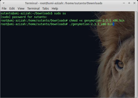 install bin file di linux xubuntu