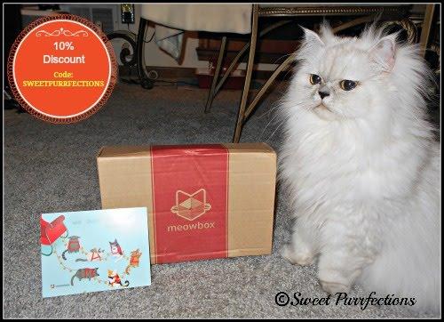 Meowbox Discount - 10%
