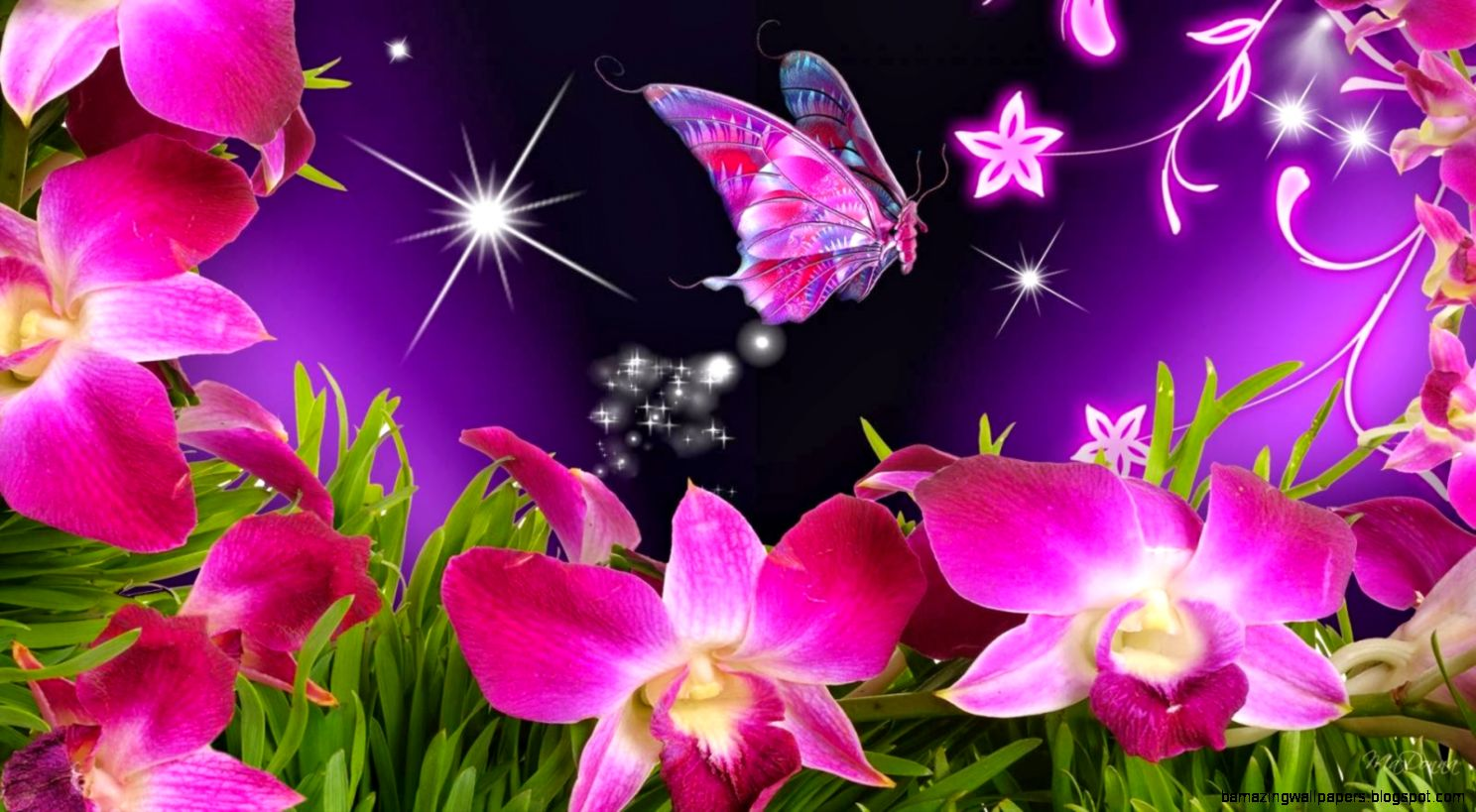 butterfly flowers orchid