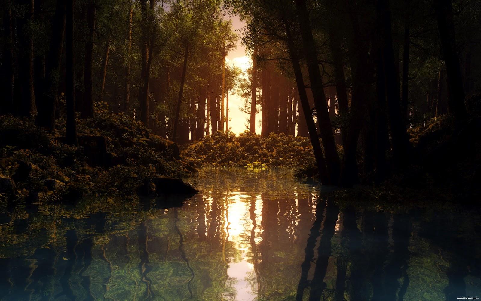 http://3.bp.blogspot.com/-Bg8WFF0HT3A/TzLJom2NETI/AAAAAAAAAJI/_LghQOR1m08/s1600/HD_Nature_Wallpapers_by_CurtiXs.jpg