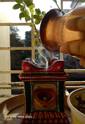 My tulsi plant